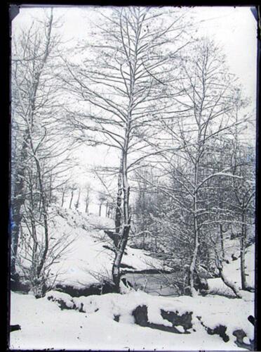 Vallée Tard (Saint-Léonard)