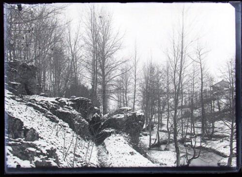 Bois des Amoureux - Le Tard - Neige