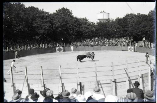 Corrida (1934)