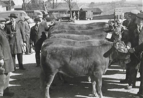 Champ de foire - Dr Barrière - Maire - Préfet (1950-60)