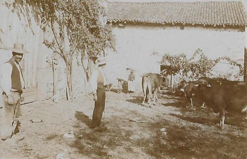 Ferme du Fermigier (1910)