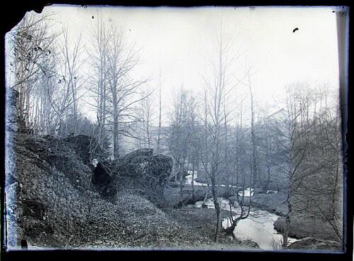 Vallée Tard - Chute des feuilles