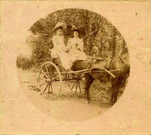Château du Repaire de Tardivet - Jeunes filles en calèche. 15-17 août 1902