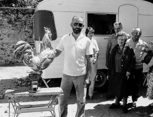 Nouveau coq (28.07.1984)