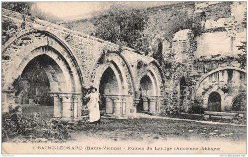 Ruines de l'Artige
